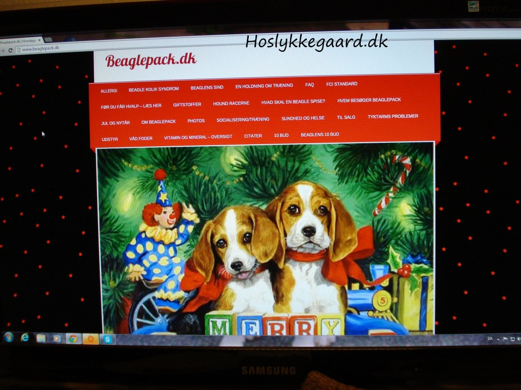 Beaglepack.dk