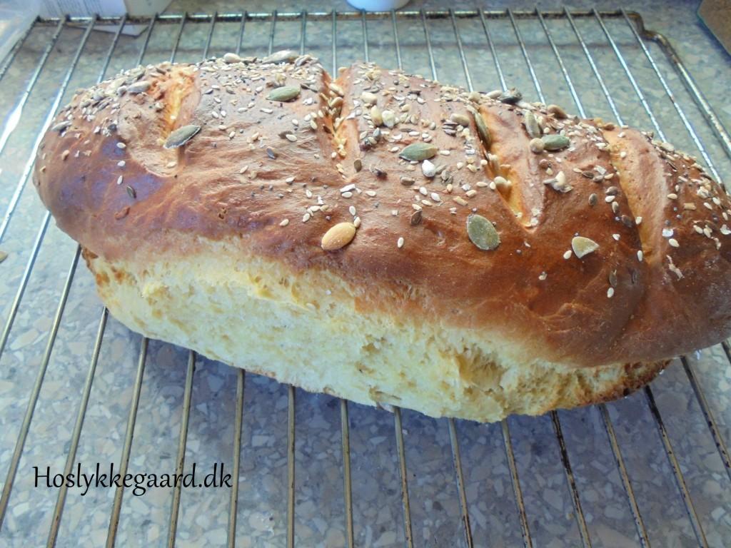 Kikærte brød