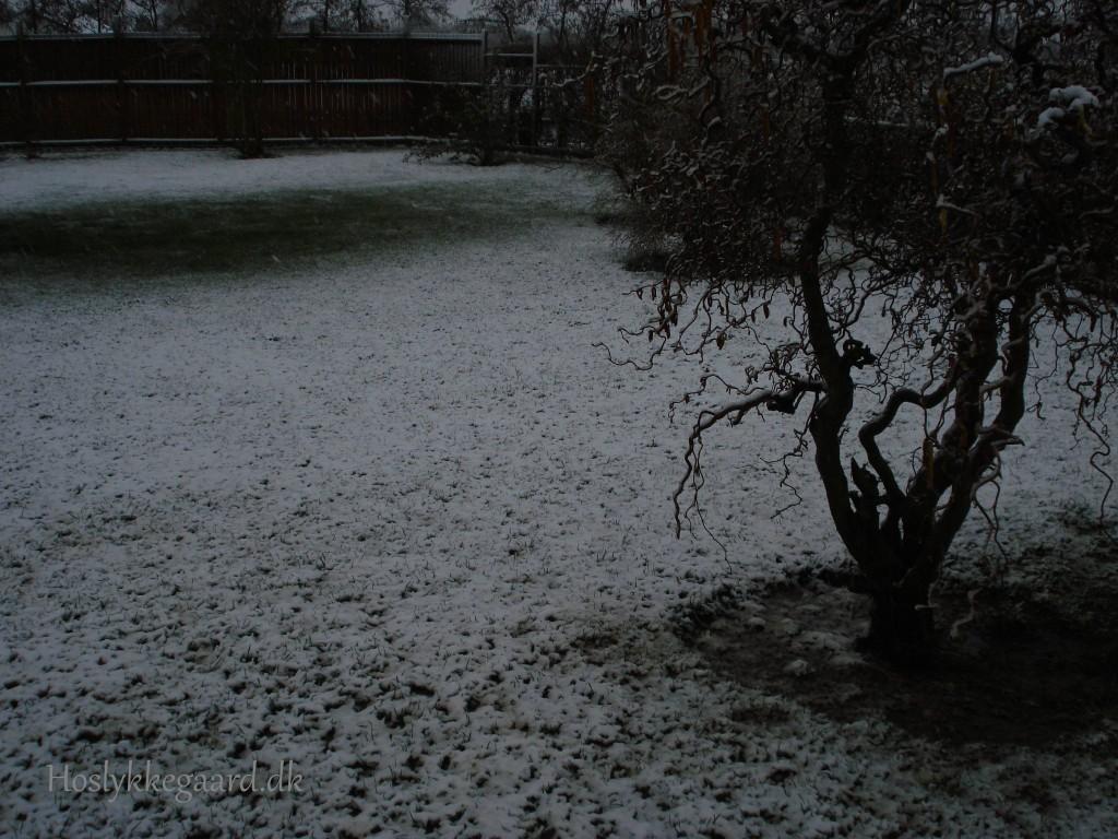Snevejr 31. marts 2015