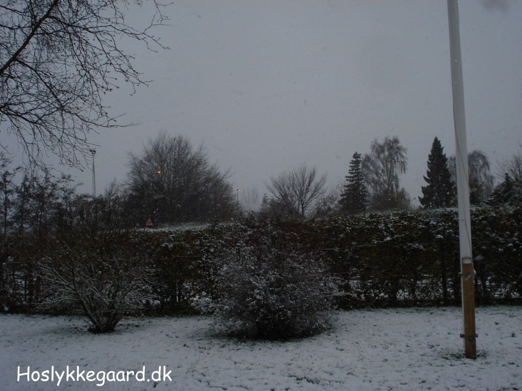 Mere sne