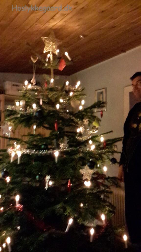 Juletræet og en Simon der lige har listet sig ind i billedet