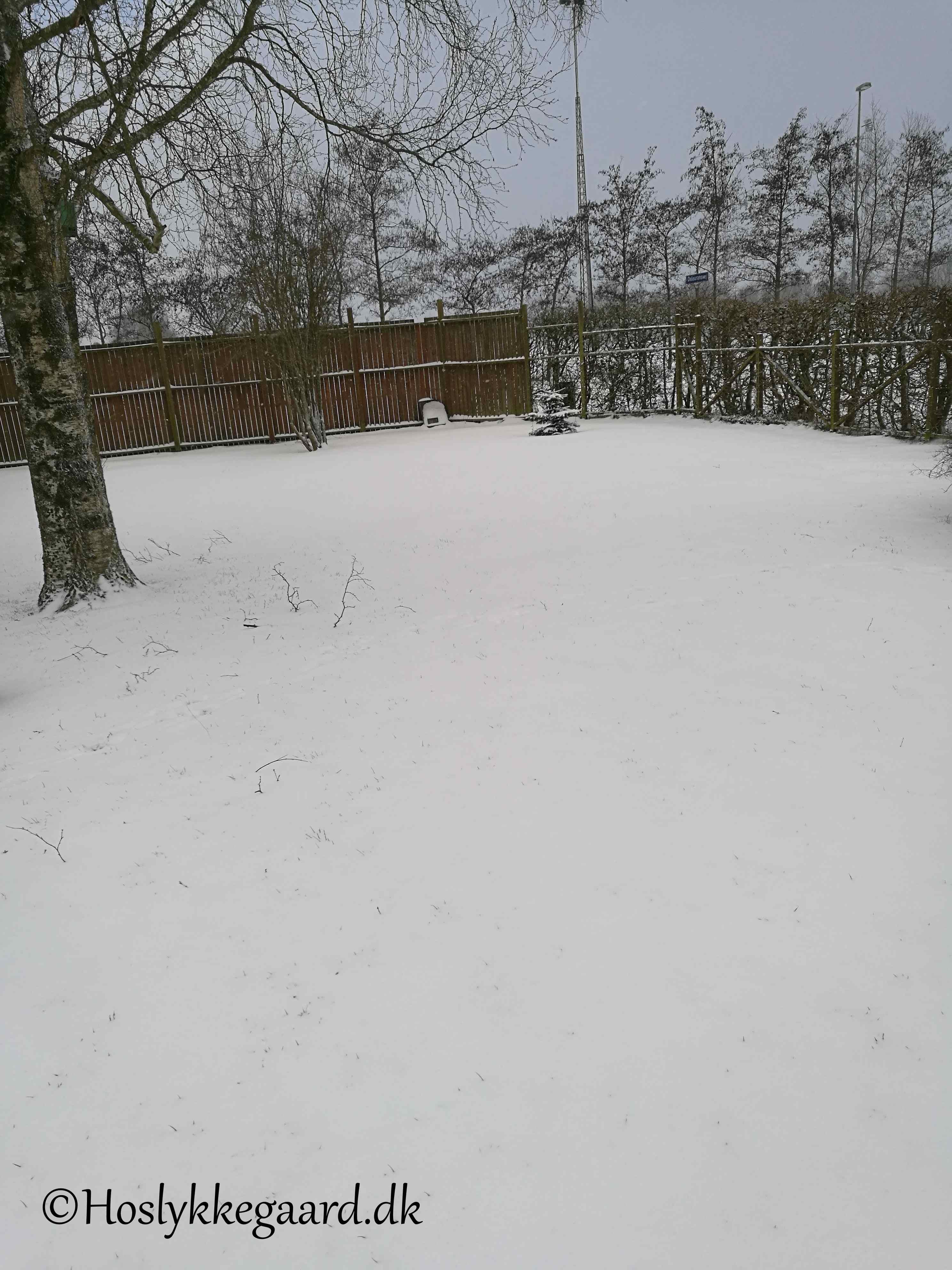 En vinter der vil noget